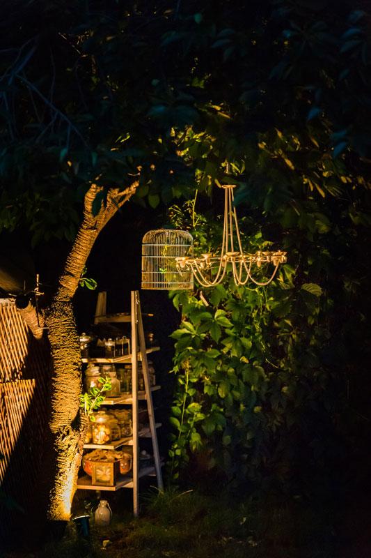 gradina in bucuresti, plaja urbana, foisor din ferestre recuperate, gradina creata de la zero, bambusi, gazon, artar japonez, straturi de lavanda, leandri, ghirlande de becuri, sezlonguri, mobilier cool pentru gradina, bar pe plaja, bar din banc de lucru, hotensii mari, magnolie copac, geamanduri lampi, felinare suspendate, gradina mereu verde, plante mediteraneene, plante aromatice, curry in ghiveci, leandri imensi, ierburi marine, ghiveci iluminat, accesorii marine
